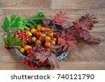 Autumn Still Life. Tomatoes An...
