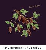 cacao plant vector on dark... | Shutterstock .eps vector #740130580
