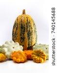 one big pumpkin and different...   Shutterstock . vector #740145688
