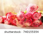 beautiful pink roses flowers in ... | Shutterstock . vector #740155354