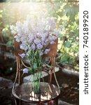 bouquet of delphinium   Shutterstock . vector #740189920