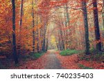 pathway in the bright autumn... | Shutterstock . vector #740235403