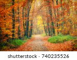 pathway in the bright autumn... | Shutterstock . vector #740235526