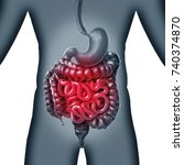 intestinal and intestine pain... | Shutterstock . vector #740374870