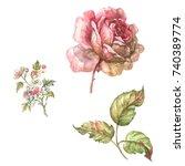 Style Marie Antoinette. Rose...