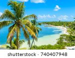 Bahia Honda State Park   Calus...
