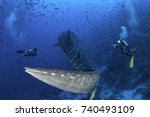 scuba divers swim alongside a... | Shutterstock . vector #740493109