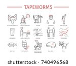 tapeworms. symptoms  treatment. ... | Shutterstock . vector #740496568