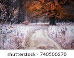 grass covered with white frost... | Shutterstock . vector #740500270