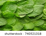 bright green mint leaves ... | Shutterstock . vector #740521318