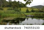Stock photo loch ness monster trying to run away 740553133