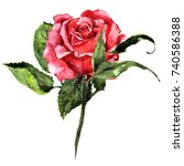 Stock photo isolated red watercolor rose with leaves 740586388