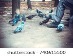 an old man in the park sits on... | Shutterstock . vector #740615500
