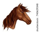 horse or racehorse animal head
