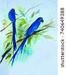 hyacinth macaw  anodorhynchus...   Shutterstock . vector #740649388