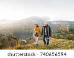senior couple on a walk in an... | Shutterstock . vector #740656594