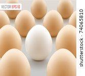 white egg concept. vector... | Shutterstock .eps vector #74065810