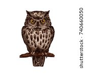 owl or eagle owl bird sketch... | Shutterstock .eps vector #740660050
