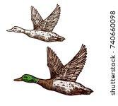 duck or mallard wild bird... | Shutterstock .eps vector #740660098