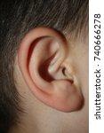 close up of kid ear | Shutterstock . vector #740666278