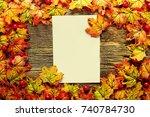 a sheet of paper among the... | Shutterstock . vector #740784730