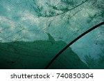 silhouette ravens bird on the... | Shutterstock . vector #740850304