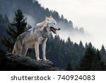 timber wolf hunting in mountain | Shutterstock . vector #740924083