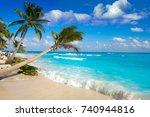 playa del carmen beach palm...   Shutterstock . vector #740944816