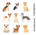 Stock vector dogs collection vector illustration of funny cartoon different breeds dogs in trendy flat style 740988544