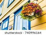 hanging flower pot closeup of... | Shutterstock . vector #740996164