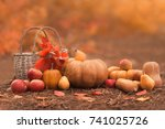still life of harvest fruit and ... | Shutterstock . vector #741025726