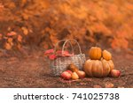 still life of harvest fruit and ... | Shutterstock . vector #741025738