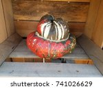 Gourd Or Squash In A Wood Crate