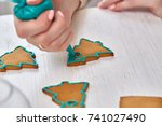 christmas treats. handmade... | Shutterstock . vector #741027490