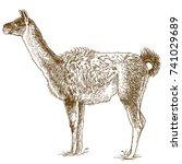 vector antique engraving...   Shutterstock .eps vector #741029689