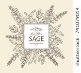 background with sage  branch of ... | Shutterstock .eps vector #741079054