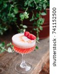 pink alcoholic cocktail... | Shutterstock . vector #741152500