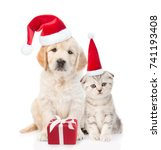 Stock photo funny kitten and golden retriever puppy in red christmas hats with gift box isolated on white 741193408