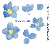 set of spring flowers. forget...   Shutterstock . vector #741200788