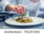 chef in hotel or restaurant... | Shutterstock . vector #741247240