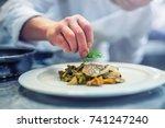chef in hotel or restaurant... | Shutterstock . vector #741247240