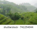 rice terraces in the rain.... | Shutterstock . vector #741254044