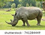 white rhinoceros in the... | Shutterstock . vector #741284449