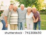 group of elderly people resting ... | Shutterstock . vector #741308650
