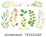collection of botanical elements | Shutterstock . vector #741322264
