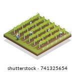 viticulture isometric... | Shutterstock .eps vector #741325654