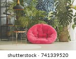 palm tree in braided pot behind ... | Shutterstock . vector #741339520