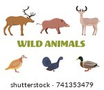 wild forest animals with wild... | Shutterstock . vector #741353479