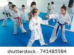 glad kids sparring in pairs to... | Shutterstock . vector #741485584