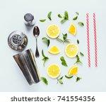 top view of citrus slices  mint ... | Shutterstock . vector #741554356